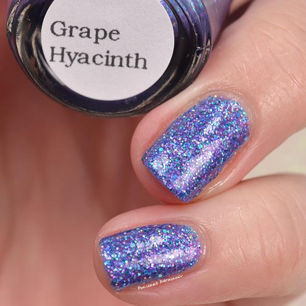 black-dahlia-lacquers-grape-hyacinth-name