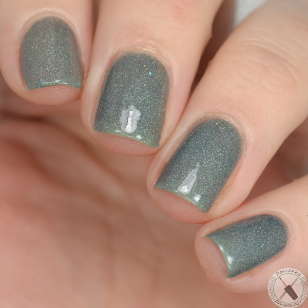 Contrary Polish Changeling