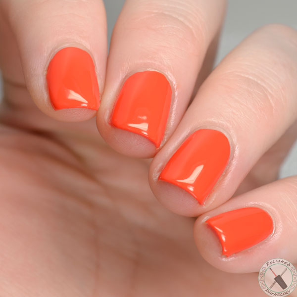 Cam Zoya Sunsets Collection
