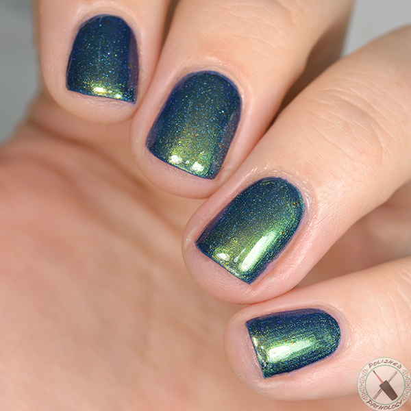 Polish Con Event Exclusive Colors By Llarowe Chicago Chicago