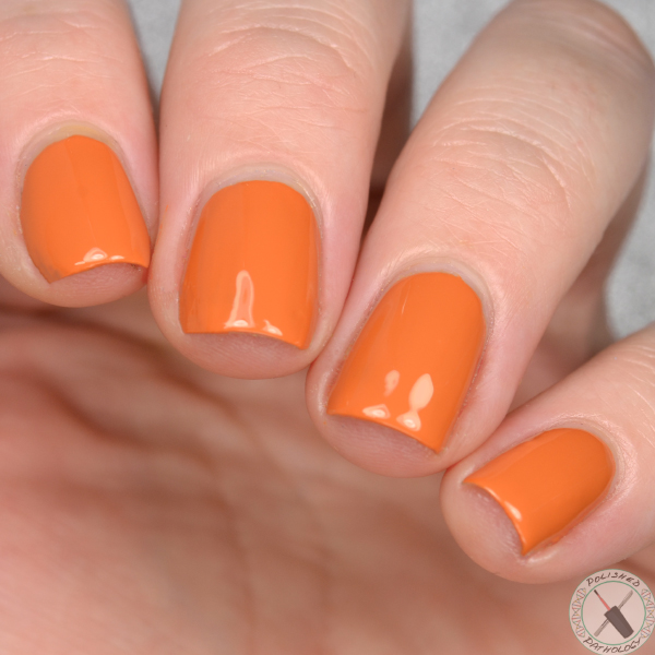KBShimmer Fall Collaboration Oh My Gourd